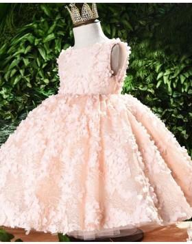 Handmade Flowers Bateau Pink Lace Flower Girl Dress FG1051