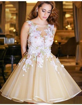 Bateau Champagne Tulle Appliqued Short Formal Dress HD3427