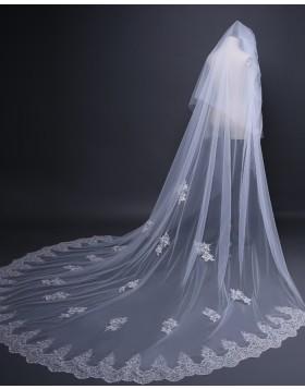 Two Tiers Lace Applique Tulle Chapel Length Bridal Veil TS17109