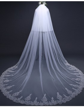 Two Tier Lace Applique Tulle Cathedral Length Bridal Veil TS17120
