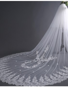 Two Tiers Ivory Lace Applique Edge Cathedral Bridal Veil TS17135