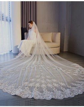 White Lace Applique Edge Tulle Cathedral Length Bridal Veil TS17153