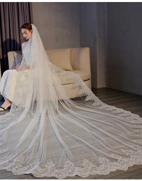 Gorgeous Lace Applique Edge Tulle Cathedral Bridal Veil TS17154