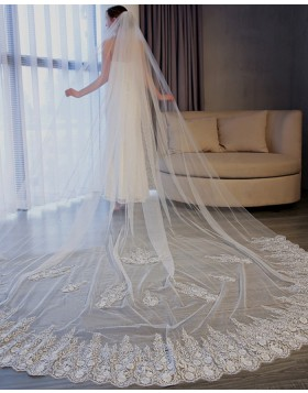 Ivory Lace Applique Edge Tulle Cathedral Length Bridal Veil TS17155