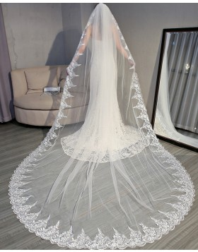 Ivory Lace Applique Edge Cathedral Bridal Veil with Comb TS18005