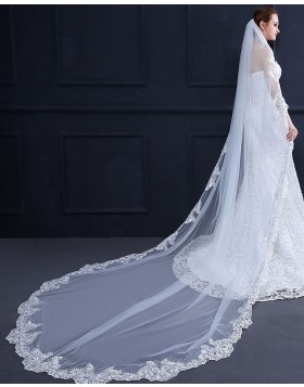 Lace Applique Edge Cathedral Length Bridal Veil with Comb TS18013